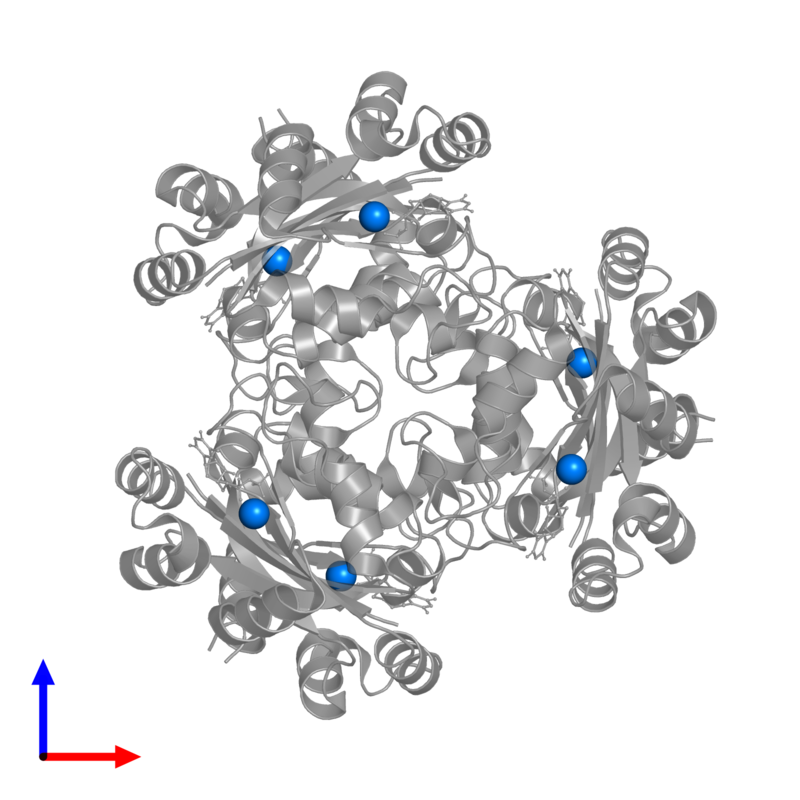<div class='caption-body'>PDB entry 3em1 contains 6 copies of MAGNESIUM ION in assembly 1. This small molecule is highlighted and viewed from the front.</div>