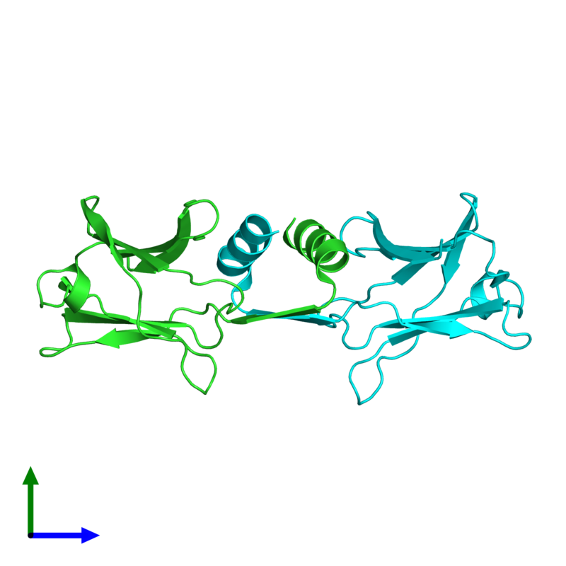<div class='caption-body'><ul class ='image_legend_ul'>The deposited structure of PDB entry 3f3h coloured by chain and viewed from the side. The entry contains: <li class ='image_legend_li'>2 copies of Immunomodulatory protein Ling Zhi-8</li><li class ='image_legend_li'>There are no non-polymeric molecules</li></ul></li></ul></li></div>