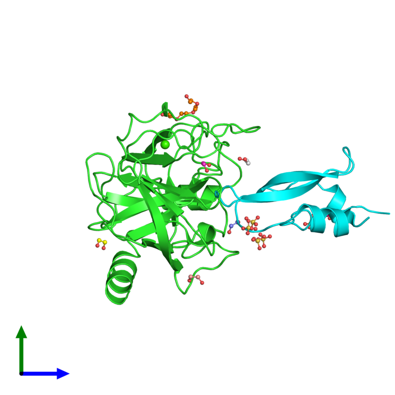 <div class='caption-body'><ul class ='image_legend_ul'>The deposited structure of PDB entry 3fp8 coloured by chain and viewed from the side. The entry contains: <li class ='image_legend_li'>1 copy of Anionic trypsin-2</li><li class ='image_legend_li'>1 copy of Pancreatic trypsin inhibitor</li><li class ='image_legend_li'>4 non-polymeric entities<ul class ='image_legend_ul'><li class ='image_legend_li'>6 copies of 1,2-ETHANEDIOL</li><li class ='image_legend_li'>1 copy of TETRAETHYLENE GLYCOL</li><li class ='image_legend_li'>1 copy of CALCIUM ION</li><li class ='image_legend_li'>4 copies of SULFATE ION</li></ul></li></div>