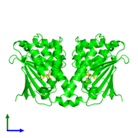 Dimeric assembly 1 of PDB entry 3ft8 coloured by chemically distinct molecules and viewed from the front.