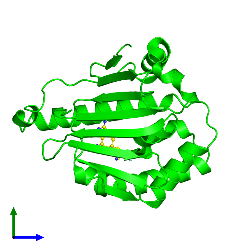 <div class='caption-body'><ul class ='image_legend_ul'>The deposited structure of PDB entry 3ft8 coloured by chemically distinct molecules and viewed from the front. The entry contains: <li class ='image_legend_li'>1 copy of Heat shock protein HSP 90-alpha</li><li class ='image_legend_li'>There is 1 non-polymeric molecule<ul class ='image_legend_ul'><li class ='image_legend_li'>1 copy of (5E,7S)-2-amino-7-(4-fluoro-2-pyridin-3-ylphenyl)-4-methyl-7,8-dihydroquinazolin-5(6H)-one oxime</li></ul></li></div>