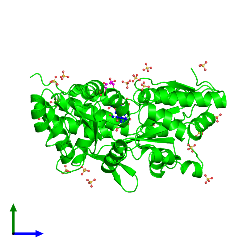 <div class='caption-body'><ul class ='image_legend_ul'> Monomeric assembly 1 of PDB entry 3g7w coloured by chemically distinct molecules and viewed from the side. This assembly contains:<li class ='image_legend_li'>One copy of Maltose-binding periplasmic protein, Islet amyloid polypeptide fusion protein</li><li class ='image_legend_li'>One copy of alpha-D-glucopyranose-(1-4)-alpha-D-glucopyranose-(1-4)-alpha-D-glucopyranose</li><li class ='image_legend_li'>20 copies of SULFATE ION</li><li class ='image_legend_li'>2 copies of GLYCEROL</li></ul></div>