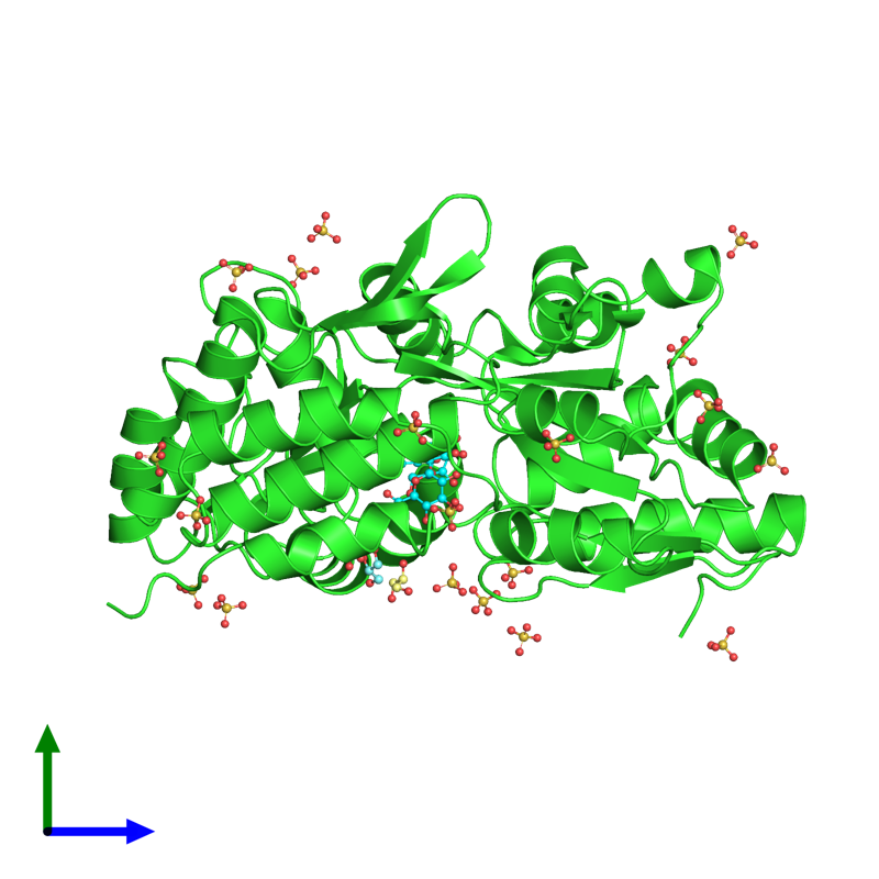 <div class='caption-body'><ul class ='image_legend_ul'>The deposited structure of PDB entry 3g7w coloured by chain and viewed from the side. The entry contains: <li class ='image_legend_li'>1 copy of Maltose-binding periplasmic protein, Islet amyloid polypeptide fusion protein</li><li class ='image_legend_li'>2 non-polymeric entities<ul class ='image_legend_ul'><li class ='image_legend_li'>20 copies of SULFATE ION</li><li class ='image_legend_li'>2 copies of GLYCEROL</li></ul></li></div>