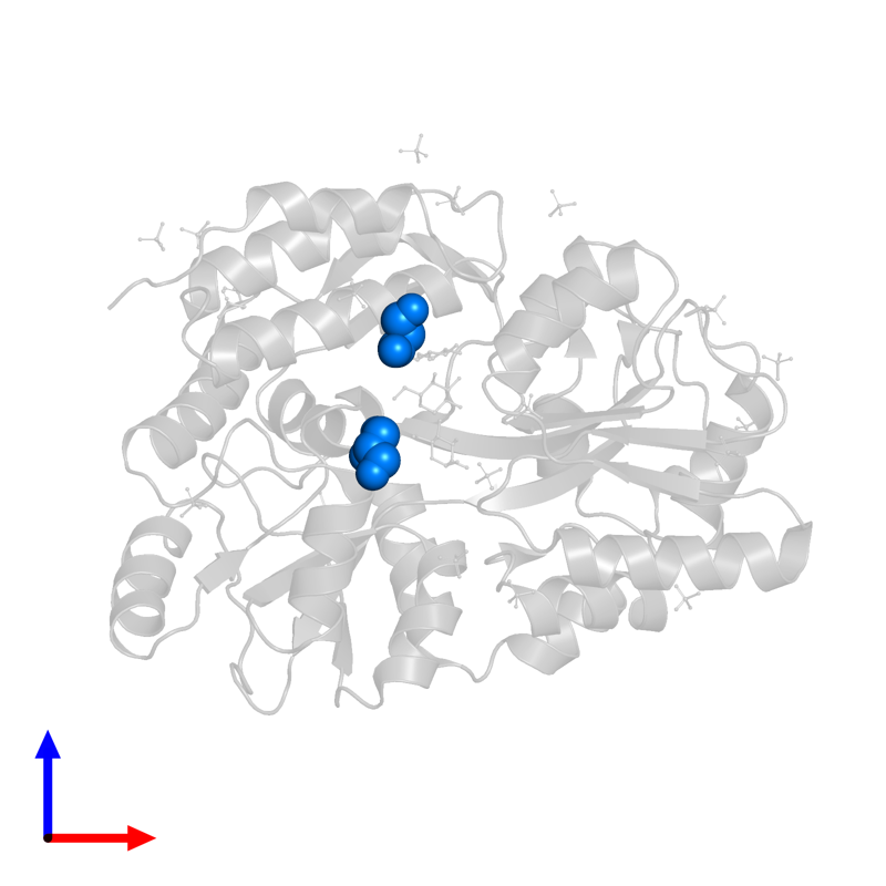 <div class='caption-body'>PDB entry 3g7w contains 2 copies of GLYCEROL in assembly 1. This small molecule is highlighted and viewed from the front.</div>