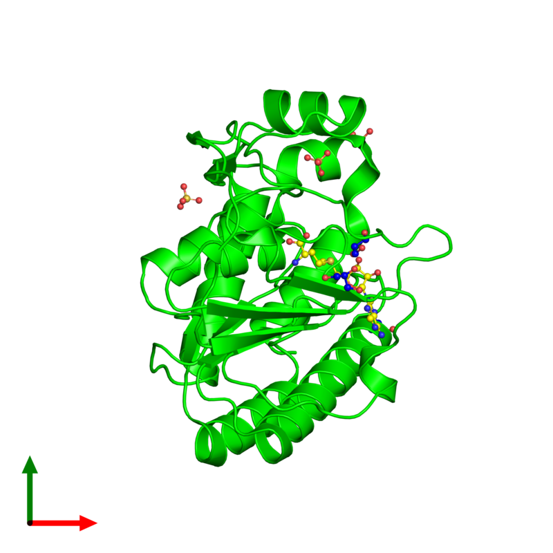 <div class='caption-body'><ul class ='image_legend_ul'> Monomeric assembly 1 of PDB entry 3gcz coloured by chemically distinct molecules and viewed from the top. This assembly contains:<li class ='image_legend_li'>One copy of Core protein</li><li class ='image_legend_li'>One copy of S-ADENOSYLMETHIONINE</li><li class ='image_legend_li'>3 copies of GLYCEROL</li><li class ='image_legend_li'>3 copies of SULFATE ION</li></ul></div>
