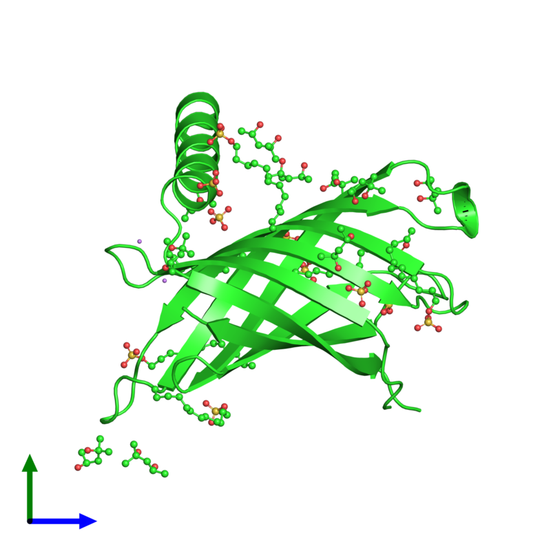<div class='caption-body'><ul class ='image_legend_ul'>The deposited structure of PDB entry 3gp6 coloured by chain and viewed from the front. The entry contains: <li class ='image_legend_li'>1 copy of Lipid A palmitoyltransferase PagP</li><li class ='image_legend_li'>5 non-polymeric entities<ul class ='image_legend_ul'><li class ='image_legend_li'>6 copies of DODECYL SULFATE</li><li class ='image_legend_li'>9 copies of (4S)-2-METHYL-2,4-PENTANEDIOL</li><li class ='image_legend_li'>1 copy of (4R)-2-METHYLPENTANE-2,4-DIOL</li><li class ='image_legend_li'>6 copies of SULFATE ION</li><li class ='image_legend_li'>2 copies of LITHIUM ION</li></ul></li></div>