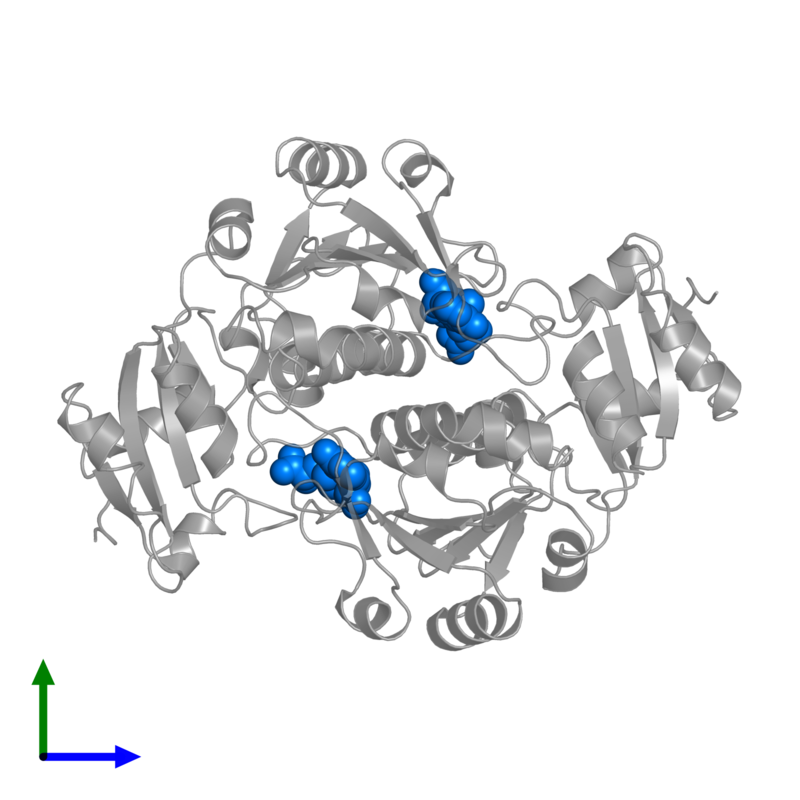 <div class='caption-body'>PDB entry 3gyq contains 2 copies of S-ADENOSYLMETHIONINE in assembly 1. This small molecule is highlighted and viewed from the front.</div>