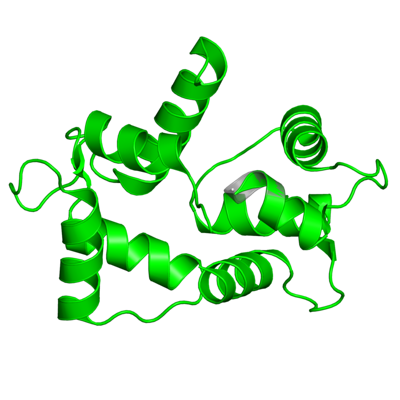 <div class='caption-body'>1 copy of CATH domain <a target='_blank' href='http://www.cathdb.info/cathnode/1.10.238.10'>1.10.238.10</a> (Recoverin; domain 1) in Calmodulin in PDB entry 3if7.</div>