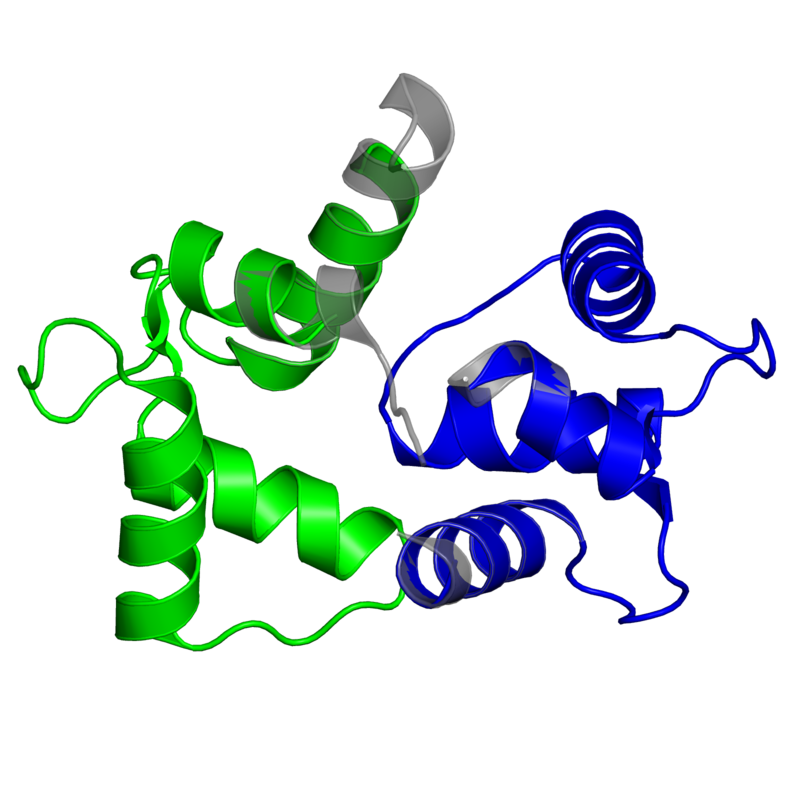 <div class='caption-body'>2 copies of Pfam domain <a target='_blank' href='pfam.xfam.org/family/PF13499'>PF13499</a> (EF-hand domain pair) in Calmodulin in PDB entry 3if7.</div>