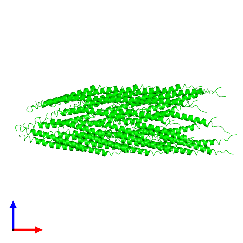 <div class='caption-body'><ul class ='image_legend_ul'> 35-meric assembly 1 of PDB entry 3ifm coloured by chemically distinct molecules and viewed from the front. This assembly contains:<li class ='image_legend_li'>35 copies of Capsid protein G8P</li></ul></div>