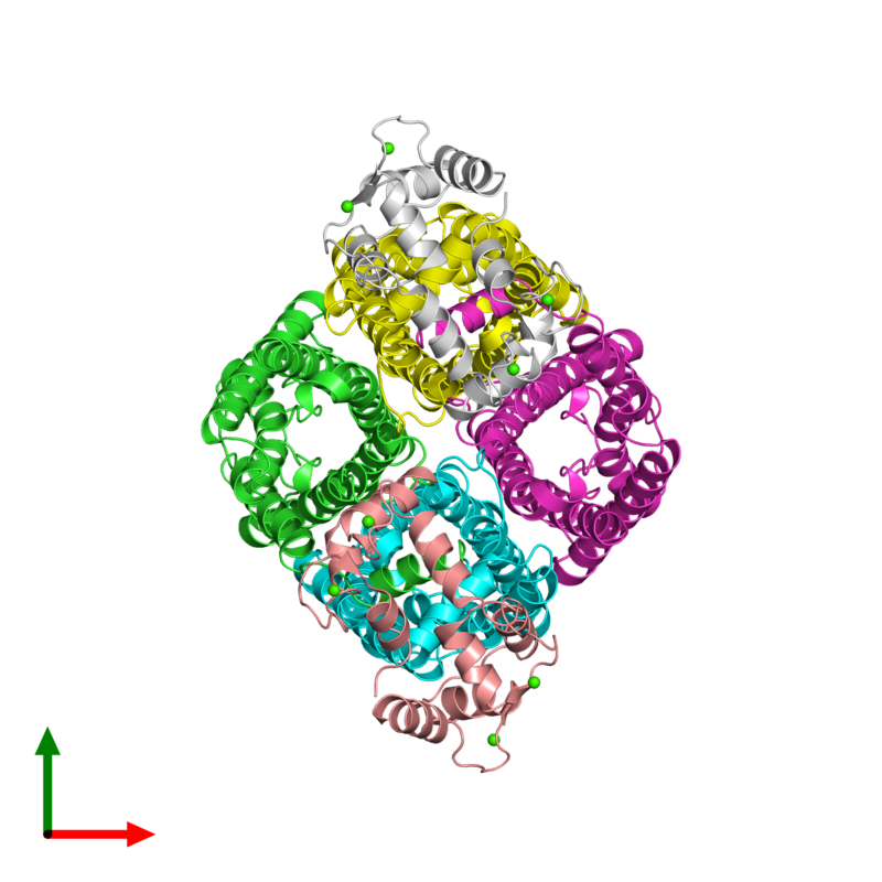 <div class='caption-body'><ul class ='image_legend_ul'>The deposited structure of PDB entry 3j41 coloured by chain and viewed from the top. The entry contains: <li class ='image_legend_li'>4 copies of Lens fiber major intrinsic protein</li><li class ='image_legend_li'>2 copies of Calmodulin-1</li><li class ='image_legend_li'>There is 1 non-polymeric molecule<ul class ='image_legend_ul'><li class ='image_legend_li'>8 copies of CALCIUM ION</li></ul></li></div>