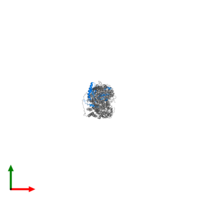 PDB 3j4r contains 1 copy of A-kinase anchor protein 18 in assembly 1. This protein is highlighted and viewed from the top.