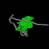 1 copy of Pfam domain PF00063 (Myosin head (motor domain)) in Myosin 2 heavy chain in PDB 3jax.