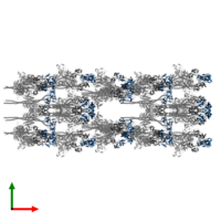 PDB 3jax contains 40 copies of Myosin regulatory light chain in assembly 1. This protein is highlighted and viewed from the top.
