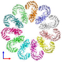 PDB 3jbl coloured by chain and viewed from the front.