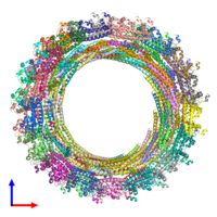 PDB 3jc1 coloured by chain and viewed from the front.