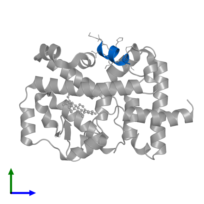 <div class='caption-body'>PDB entry 3l0j contains 1 copy of Nuclear receptor coactivator 2 in assembly 1. This protein is highlighted and viewed from the front.</div>