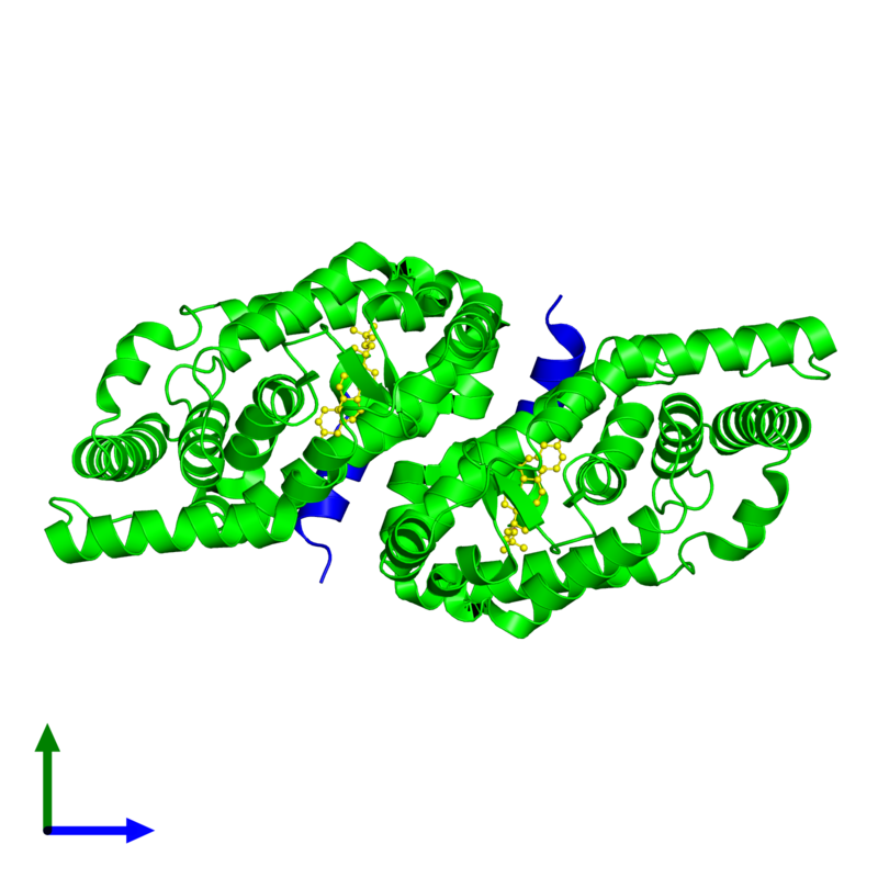 <div class='caption-body'><ul class ='image_legend_ul'>The deposited structure of PDB entry 3l0l coloured by chemically distinct molecules and viewed from the side. The entry contains: <li class ='image_legend_li'>2 copies of Nuclear receptor ROR-gamma</li><li class ='image_legend_li'>2 copies of SCR2-2</li><li class ='image_legend_li'>There is 1 non-polymeric molecule<ul class ='image_legend_ul'><li class ='image_legend_li'>2 copies of 25-HYDROXYCHOLESTEROL</li></ul></li></div>