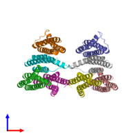 PDB 3l8r coloured by chain and viewed from the side.