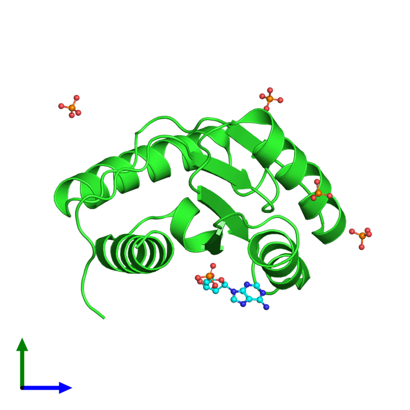 <div class='caption-body'><ul class ='image_legend_ul'> Monomeric assembly 3 of PDB entry 3lud coloured by chain and viewed from the side. This assembly contains:<li class ='image_legend_li'>One copy of Protein argonaute-2</li><li class ='image_legend_li'>One copy of ADENOSINE MONOPHOSPHATE</li><li class ='image_legend_li'>4 copies of PHOSPHATE ION</li></ul></div>