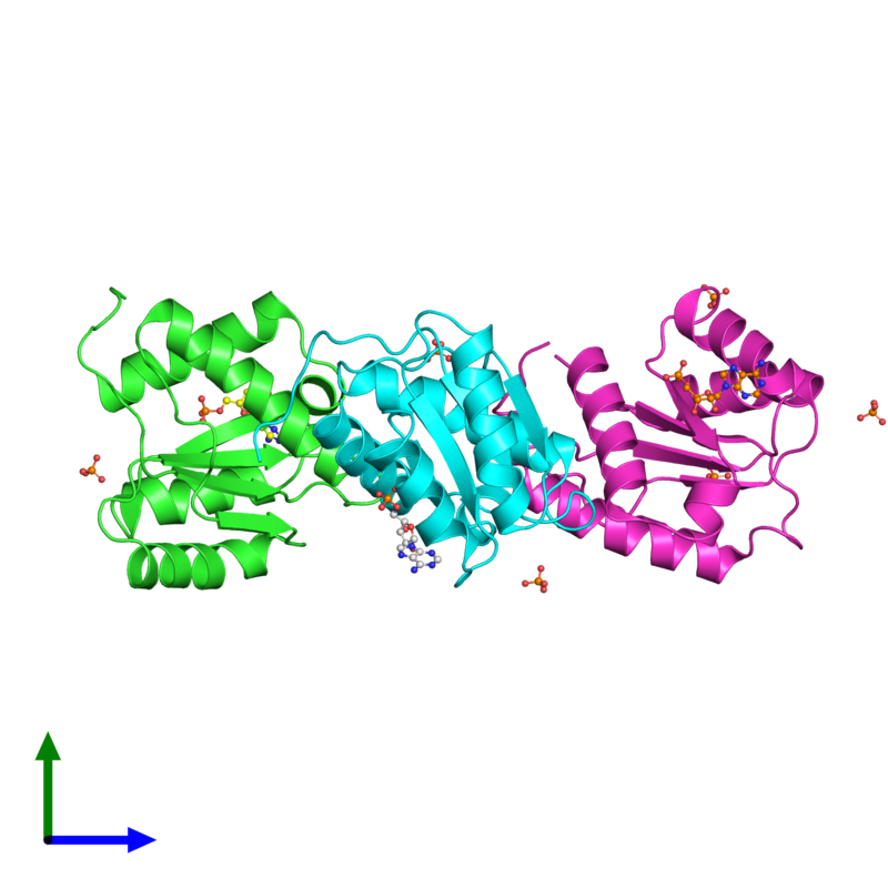 <div class='caption-body'><ul class ='image_legend_ul'>The deposited structure of PDB entry 3lud coloured by chain and viewed from the side. The entry contains: <li class ='image_legend_li'>3 copies of Protein argonaute-2</li><li class ='image_legend_li'>2 non-polymeric entities<ul class ='image_legend_ul'><li class ='image_legend_li'>3 copies of ADENOSINE MONOPHOSPHATE</li><li class ='image_legend_li'>6 copies of PHOSPHATE ION</li></ul></li></div>