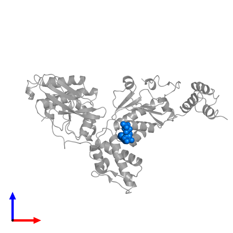 <div class='caption-body'>PDB entry 3m6a contains 1 copy of ADENOSINE-5'-DIPHOSPHATE in assembly 2. This small molecule is highlighted and viewed from the front.</div>