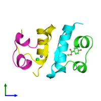 PDB 3mth coloured by chain and viewed from the front.
