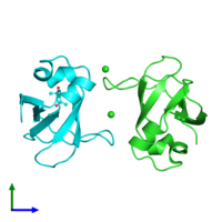 PDB 3o5z coloured by chain and viewed from the front.