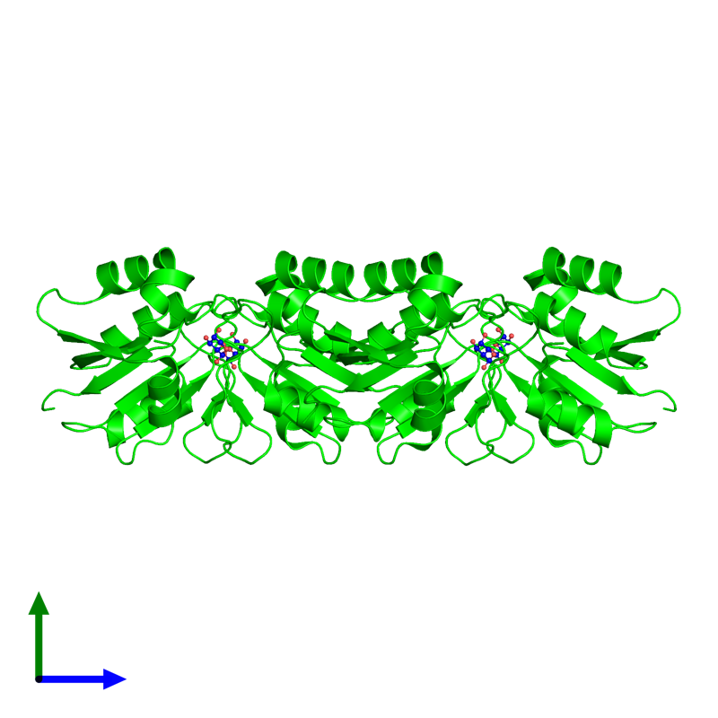 <div class='caption-body'><ul class ='image_legend_ul'>The deposited structure of PDB entry 3p13 coloured by chemically distinct molecules and viewed from the side. The entry contains: <li class ='image_legend_li'>4 copies of D-ribose pyranase</li><li class ='image_legend_li'>There is 1 non-polymeric molecule<ul class ='image_legend_ul'><li class ='image_legend_li'>4 copies of beta-D-ribopyranose</li></ul></li></div>