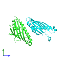 PDB 3p9v coloured by chain and viewed from the front.