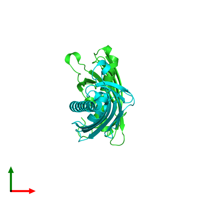 <div class='caption-body'><ul class ='image_legend_ul'>The deposited structure of PDB entry 3p9v coloured by chain and viewed from the top. The entry contains: <li class ='image_legend_li'>2 copies of Uncharacterized protein</li><li class ='image_legend_li'>There are no non-polymeric molecules</li></ul></li></ul></li></div>