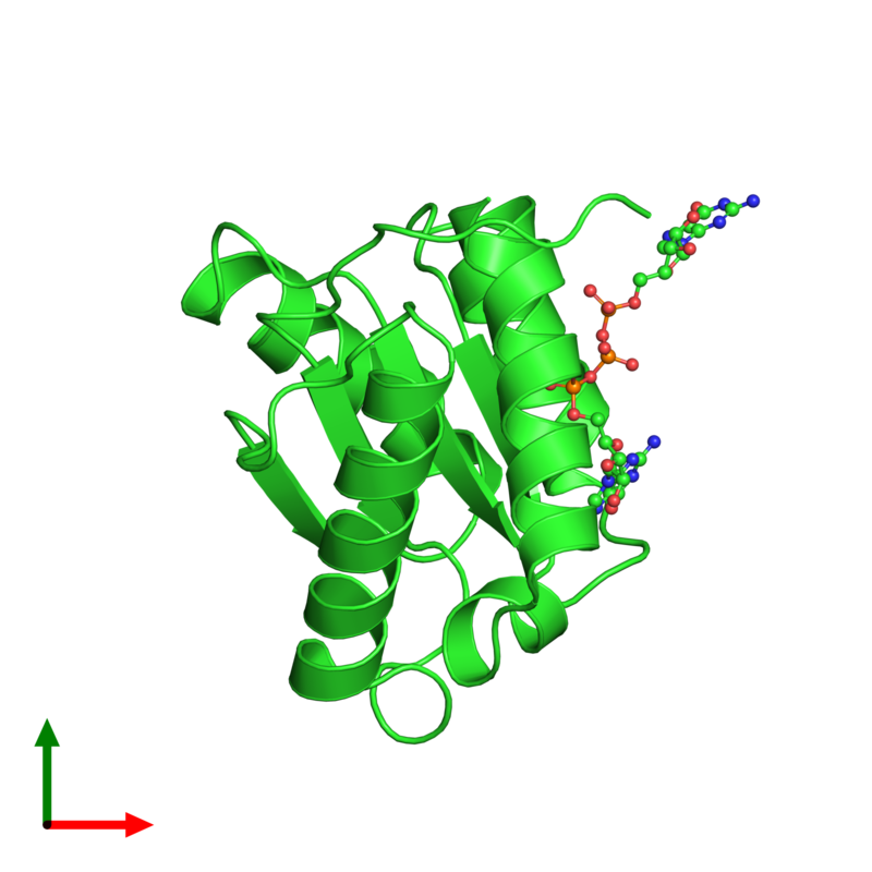 <div class='caption-body'><ul class ='image_legend_ul'> Monomeric assembly 2 of PDB entry 3qx8 coloured by chain and viewed from the top. This assembly contains:<li class ='image_legend_li'>One copy of Protein argonaute-2</li><li class ='image_legend_li'>One copy of 7-METHYL-GUANOSINE-5'-TRIPHOSPHATE-5'-GUANOSINE</li></ul></div>