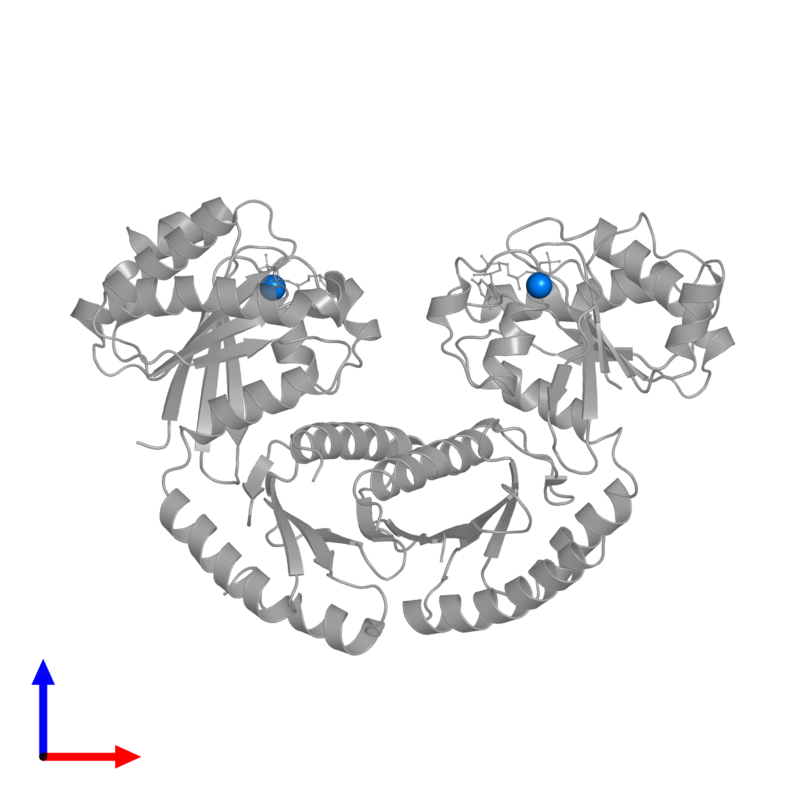 <div class='caption-body'>PDB entry 3r7w contains 2 copies of MAGNESIUM ION in assembly 1. This small molecule is highlighted and viewed from the front.</div>