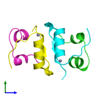 PDB 3rto coloured by chain and viewed from the front.