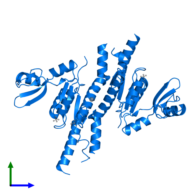 <div class='caption-body'>PDB entry 3tau contains 2 copies of Guanylate kinase in assembly 1. This protein is highlighted and viewed from the front.</div>
