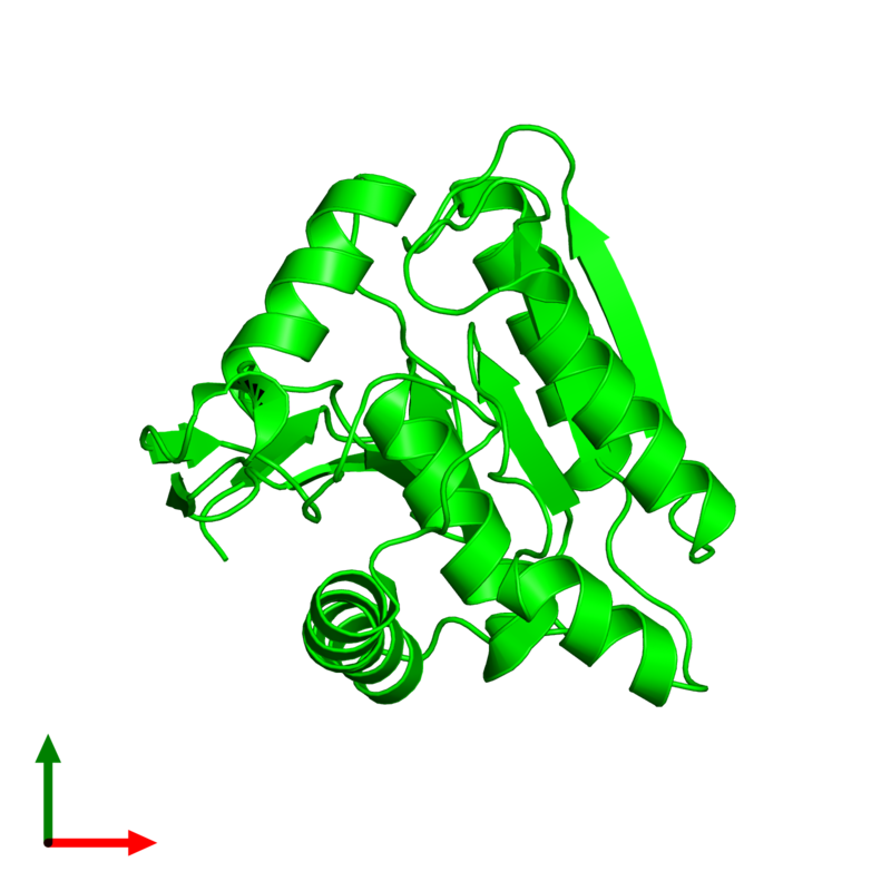 <div class='caption-body'><ul class ='image_legend_ul'> Monomeric assembly 1 of PDB entry 3u0v coloured by chemically distinct molecules and viewed from the top. This assembly contains:<li class ='image_legend_li'>One copy of Lysophospholipase-like protein 1</li></ul></div>