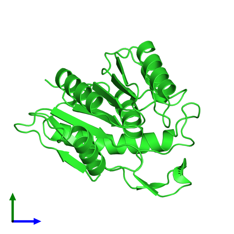 <div class='caption-body'><ul class ='image_legend_ul'>The deposited structure of PDB entry 3u0v coloured by chain and viewed from the side. The entry contains: <li class ='image_legend_li'>1 copy of Lysophospholipase-like protein 1</li><li class ='image_legend_li'>There are no non-polymeric molecules</li></ul></li></ul></li></div>