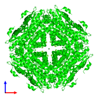 Octameric assembly 1 of PDB entry 3ugv coloured by chemically distinct molecules and viewed from the front.