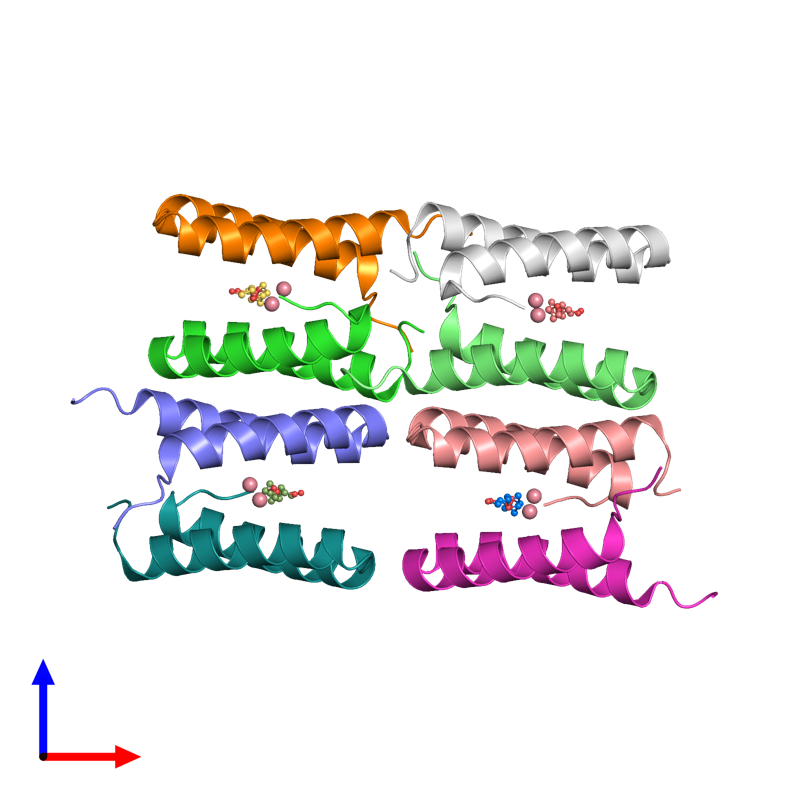 <div class='caption-body'><ul class ='image_legend_ul'>The deposited structure of PDB entry 3v1d coloured by chain and viewed from the front. The entry contains: <li class ='image_legend_li'>8 copies of Computational design, MID1-cobalt</li><li class ='image_legend_li'>2 non-polymeric entities<ul class ='image_legend_ul'><li class ='image_legend_li'>8 copies of COBALT (II) ION</li><li class ='image_legend_li'>4 copies of PENTAETHYLENE GLYCOL</li></ul></li></div>