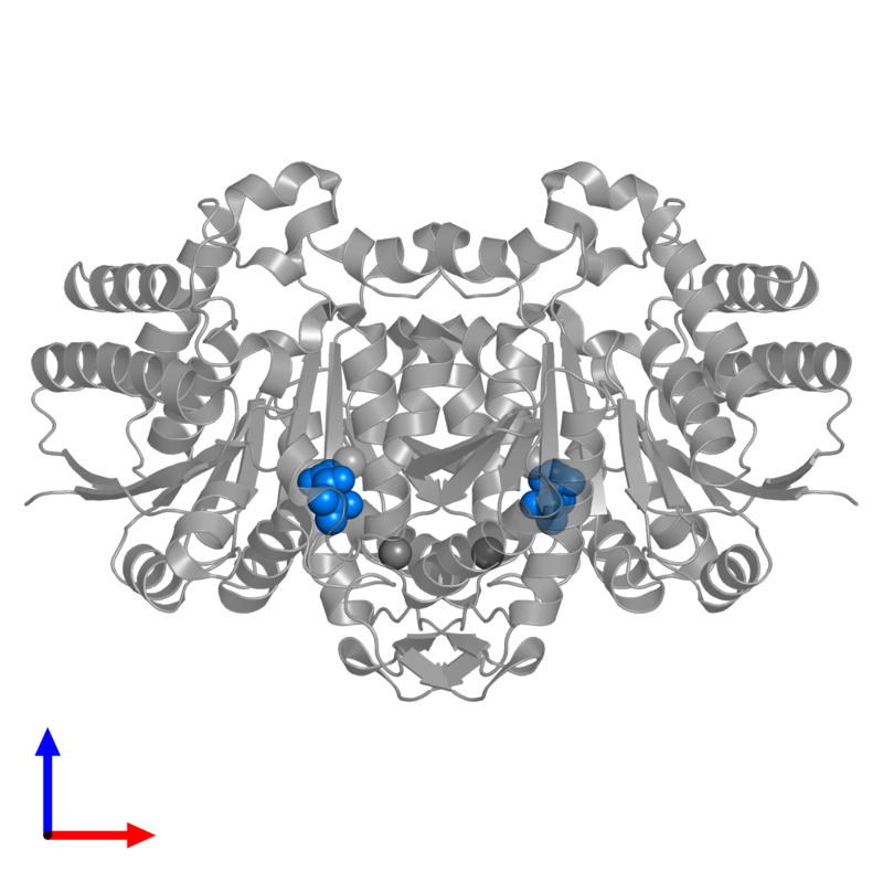 <div class='caption-body'>PDB entry 3vl3 contains 2 copies of 3-ISOPROPYLMALIC ACID in assembly 1. This small molecule is highlighted and viewed from the front.</div>