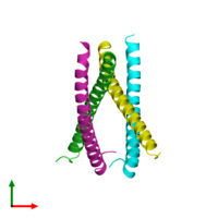 PDB 3vmx coloured by chain and viewed from the top.