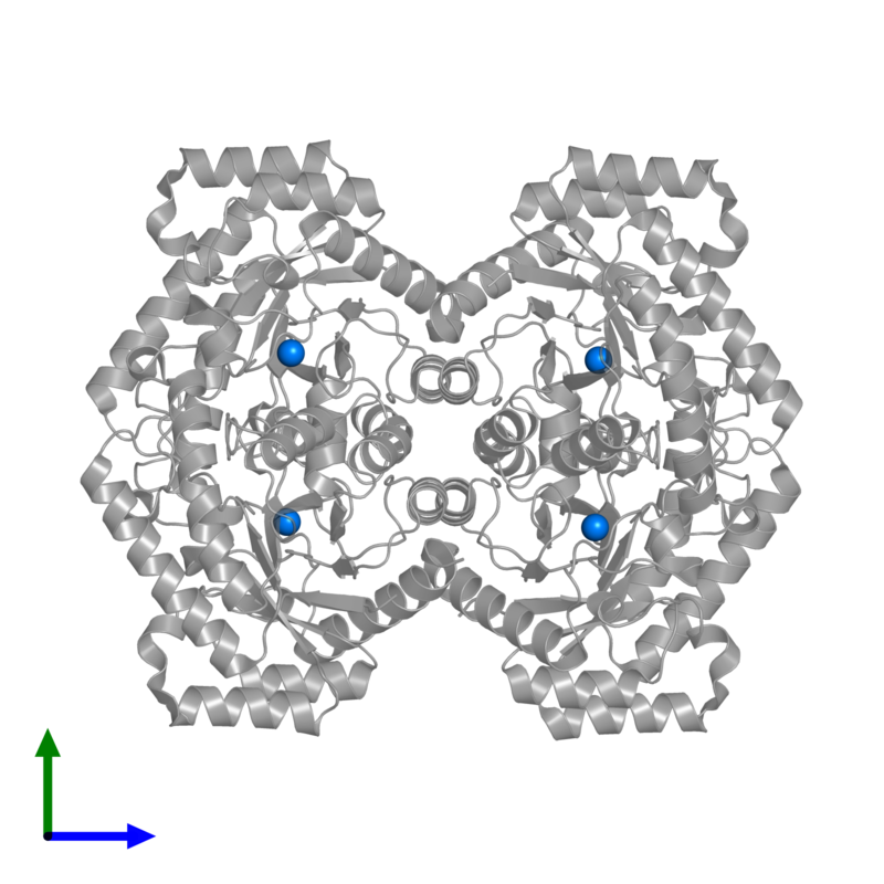 <div class='caption-body'>PDB entry 3vni contains 4 copies of MANGANESE (II) ION in assembly 1. This small molecule is highlighted and viewed from the front.</div>
