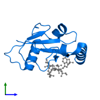 PDB 3vxw contains 1 copy of Autophagy-related protein 8 in assembly 1. This protein is highlighted and viewed from the side.