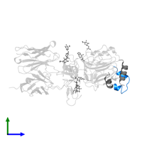 PDB 3w13 contains 1 copy of Insulin A chain in assembly 1. This protein is highlighted and viewed from the side.