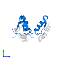 PDB 3w7y contains 3 copies of Insulin B chain in assembly 1. This protein is highlighted and viewed from the side.