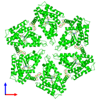 Hexameric assembly 1 of PDB entry 3zuh coloured by chemically distinct molecules and viewed from the front.