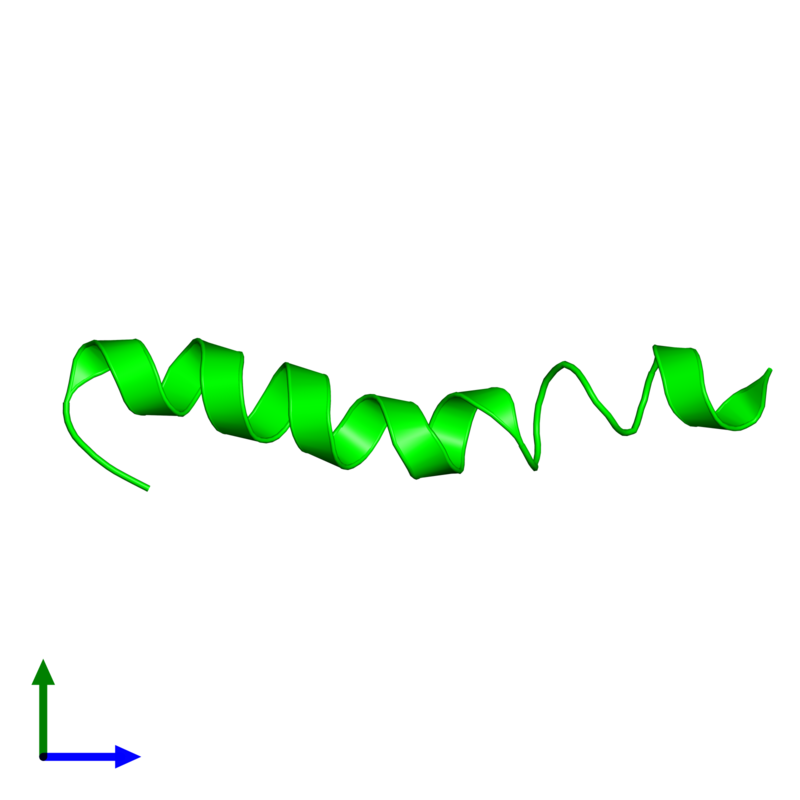 <div class='caption-body'><ul class ='image_legend_ul'> Monomeric assembly 1 of PDB entry 4b19 coloured by chemically distinct molecules and viewed from the front. This assembly contains:<li class ='image_legend_li'>One copy of PEPA1</li></ul></div>