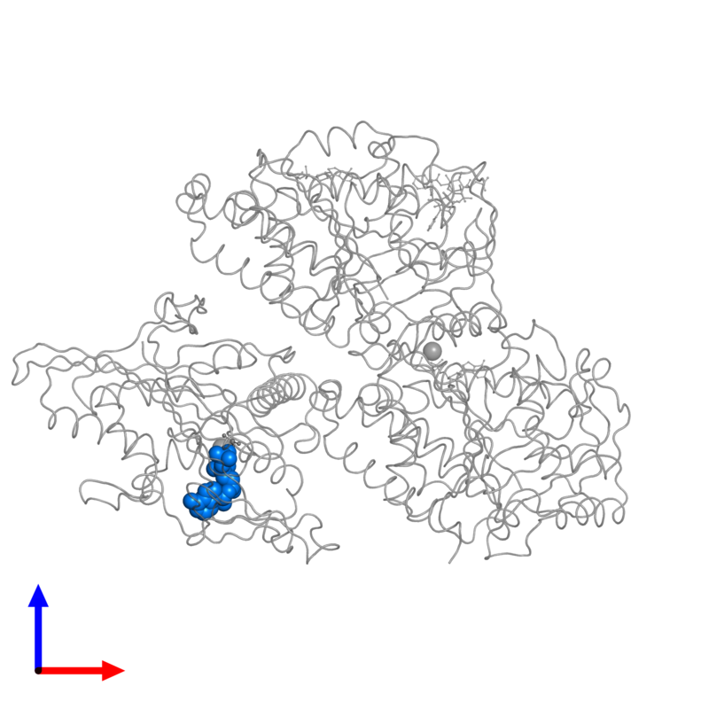 <div class='caption-body'>PDB entry 4ck7 contains 1 copy of ADENOSINE-5'-DIPHOSPHATE in assembly 1. This small molecule is highlighted and viewed from the front.</div>
