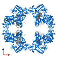PDB 4d1q contains 8 copies of TRANSPOSASE in assembly 1. This protein is highlighted and viewed from the front.