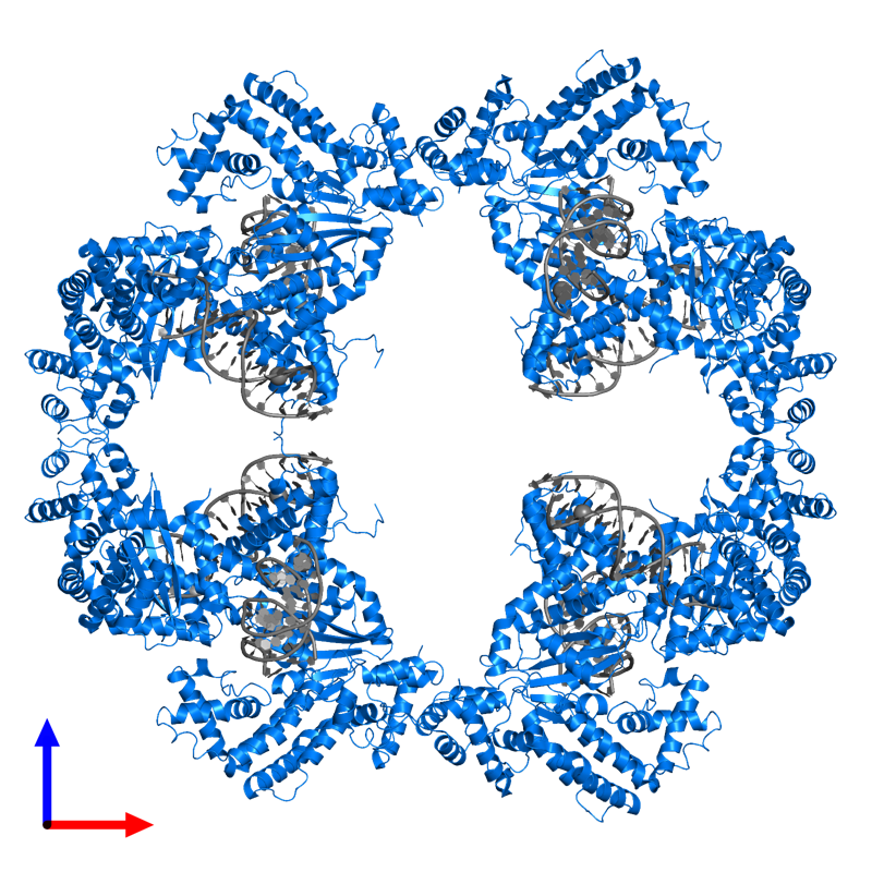 <div class='caption-body'>PDB entry 4d1q contains 8 copies of TRANSPOSASE in assembly 1. This protein is highlighted and viewed from the front.</div>
